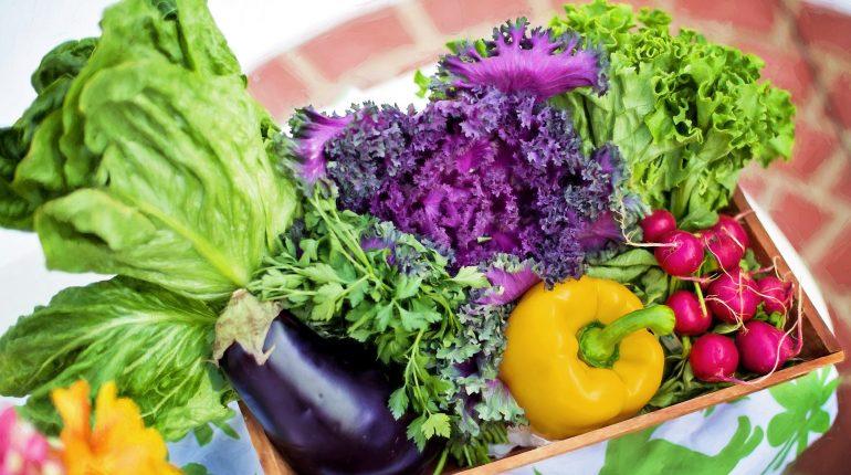Lo spreco alimentare pesa 100 g a testa al giorno